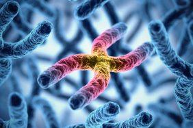 Malattia di Huntington: sintomi, cause, diagnosi e trattamento