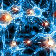 Sclerosi multipla: sintomi, cause, diagnosi e trattamento